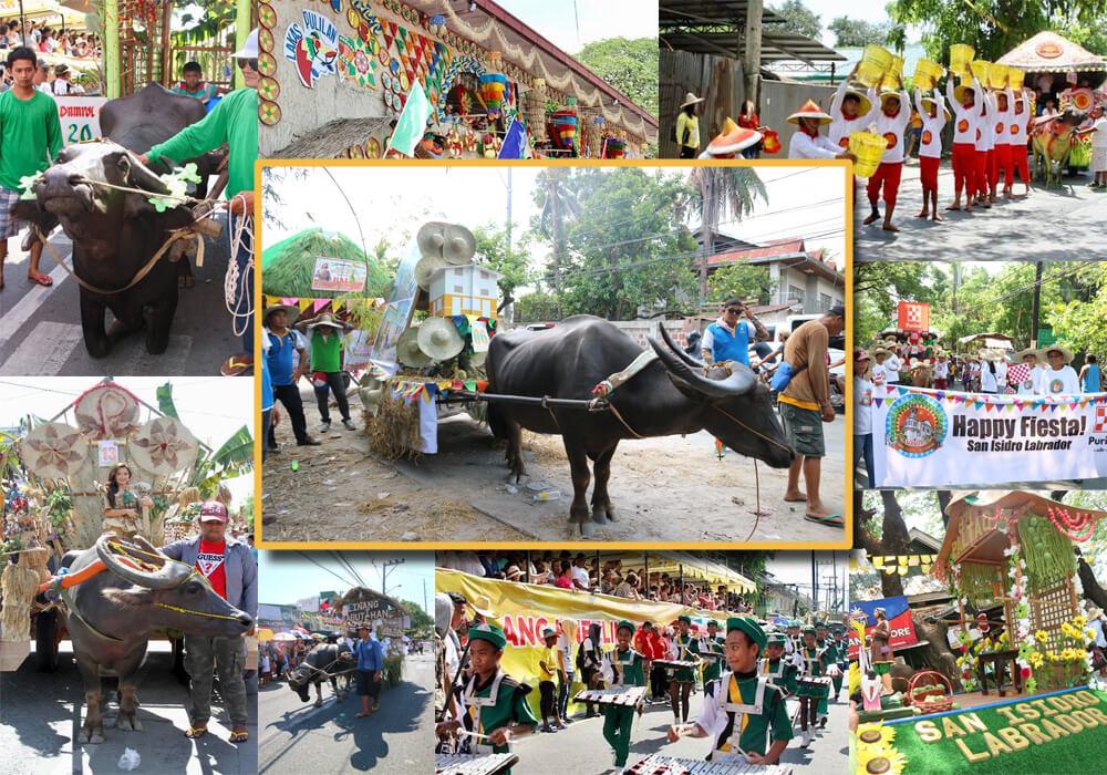 PPI celebrates Kneeling Carabao Festival 2018